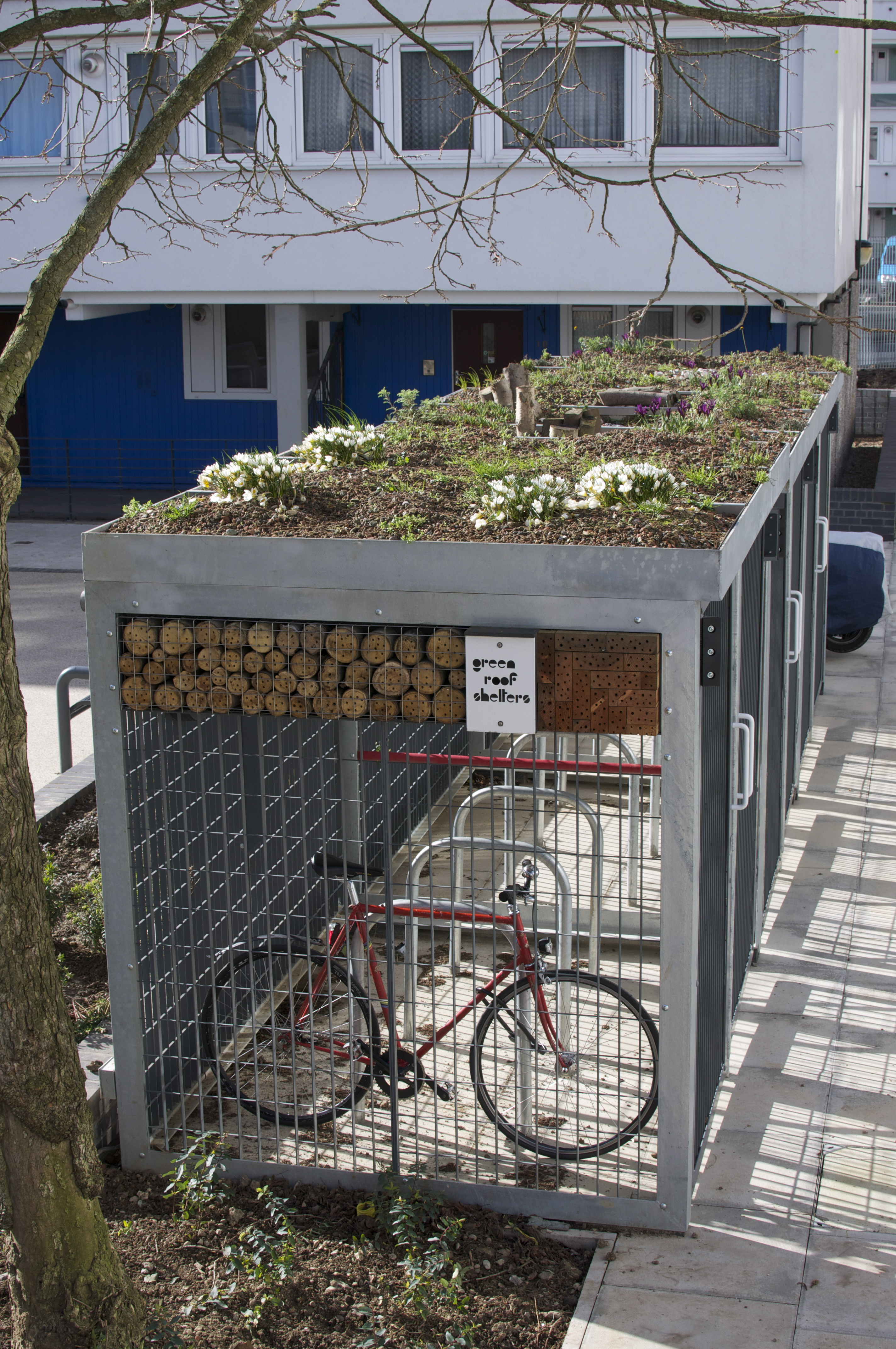 First Flush Of Spring Green Roof Shelters