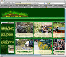 grass roof company website