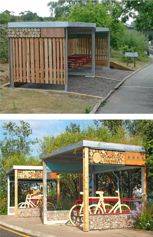 Green Roof on Cycle Shelter